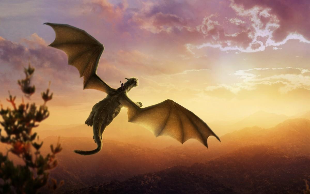 petes-dragon-12-1200x750